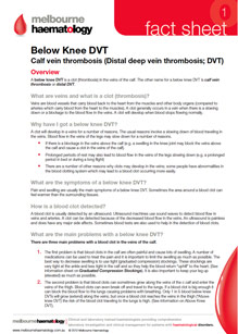Below Knee DVT - Fact Sheet